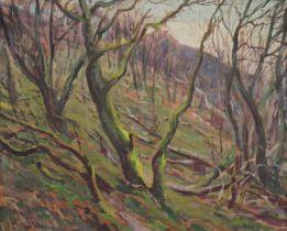 Harry Phelan Gibb (1870-1948)
