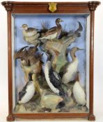 Taxidermy: A Large Cased Diorama of Arctic Birds, circa 1875, Arctic Seas, by Henry Shaw,