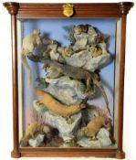 Taxidermy: A Large Cased Diorama of Australian Mammals and Reptile, circa 1876, Australia, by