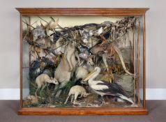 Taxidermy: A Monumental Cased Diorama of Australian Marsupials, Animals, Birds & Reptiles, circa