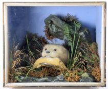Taxidermy: A Cased European Otter (Lutra lutra), circa 1875, by Henry Shaw, Taxidermy, Salop, a