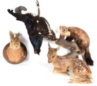Taxidermy: A Group of European Countryside Animals and Bird, circa late 20th century, comprising - a