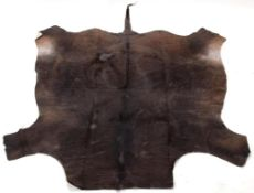 Hides/Skins: Cape Buffalo Skin Rug (Syncerus caffer caffer), modern, South Africa, adult tanned flat