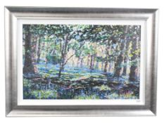 Timmy Mallett (b.1955) ''Bluebell Shadows'' Signed, numbered verso 106/195, giclee print on
