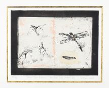 Victoria Crowe OBE, FRSE, RSA, RSW (B.1945) Scottish ''Drawn from Nature:- Crane Flies and