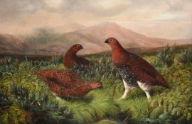 Benjamin (Lester) Hold (1839-1917) Grouse in a heather moorland Signed, oil on canvas, 48.5cm by