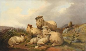 Circle of William Watson (19th century) Sheep and lambs at rest on a fell top Oil on canvas, 74.