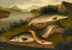 A Roland Knight (fl.1879-1921) ''Salmon and Trout of Loch Awe'' Signed, inscribed verso, oil on