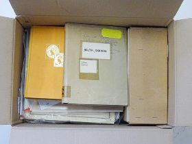 Scandinavia and Baltics, Carton filled with album pages organized by country as bought in auctions