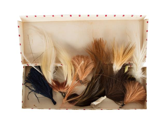 Natural History: A Small Quantity of Late Victorian Birds of Paradise Millinery Plumes, nine various
