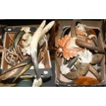 Antlers/Horns: European Mouflon/Roebuck, a collection of seven adult and juvenile mouflon horns on