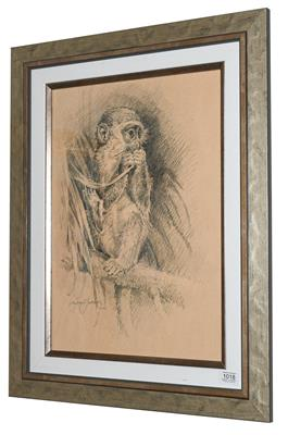 Michael Jackson (Contemporary) Study of a monkey Signed and dated 2011, pencil, 49cm by 35cm