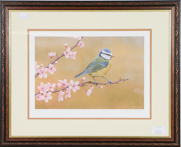 A set of limited edition Robert Fuller prints, a robin, blue tit and woodpecker, 24cm by 33cm (3)