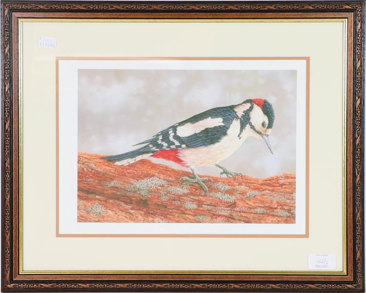 A set of limited edition Robert Fuller prints, a robin, blue tit and woodpecker, 24cm by 33cm (3) - Image 2 of 3