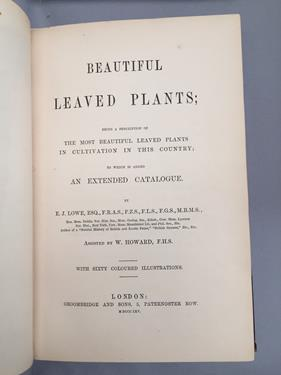 Lowe (Edward Joseph). Ferns: British and Exotic, 1st edition, mixed issues, London: Groombridge - Image 11 of 16