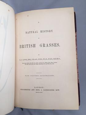 Lowe (Edward Joseph). Ferns: British and Exotic, 1st edition, mixed issues, London: Groombridge - Image 7 of 16