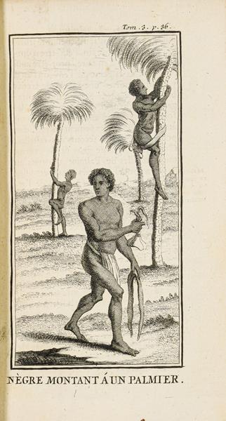 Labat (Jean-Baptiste). Nouvelle relation de l'Afrique occidentale: contentant une description exacte - Image 2 of 3