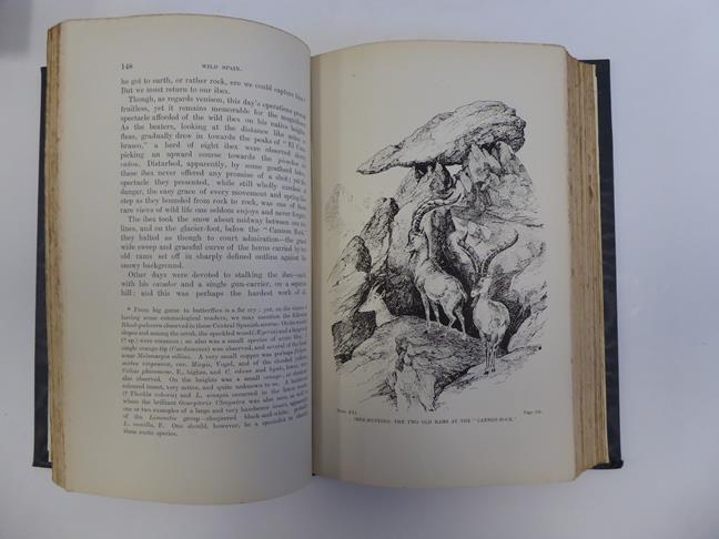 Bindings. 1) The Salmon Rivers and Lochs of Scotland. By W. L. Calderwood, 1st edition, London: - Image 13 of 15