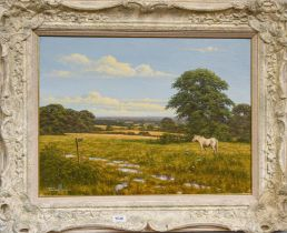 British school (Contemporary) A horse in a country field, indistinctly signed, oil on canvas, 45cm