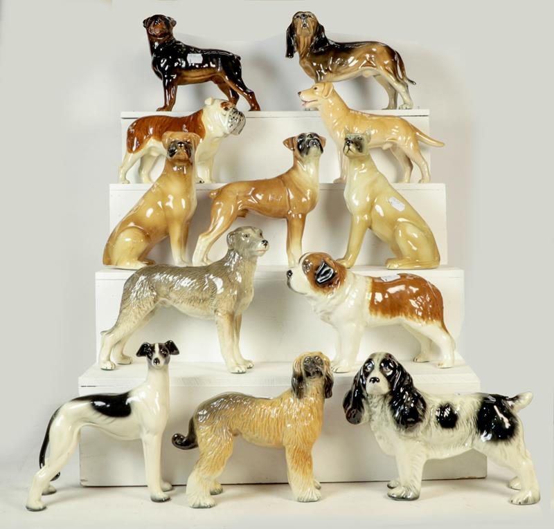 Beswick Dales Pony ''Maisie'', model No. 1671, black gloss, three Beswick foals in brown gloss and a - Image 2 of 3