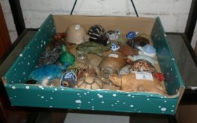 Collection of assorted pottery and glass tortoise ornaments