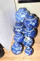 Collection of eight Chinese blue and white prunus ginger jars and seven covers.