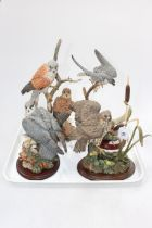 Border Fine Arts Flying Peregrine and three Country Artists Birds of Prey models.