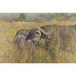 Tony Forrest ARR Framed oil on canvas, signed 'Buffalo, Okavango Delta, Botswana' 84cm x 125 cm