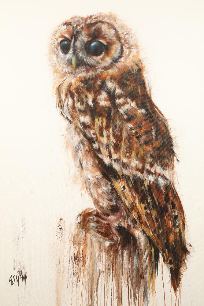 Georgina McMaster ARR Framed oil on canvas, signed Tawny Owl 'Minstral'