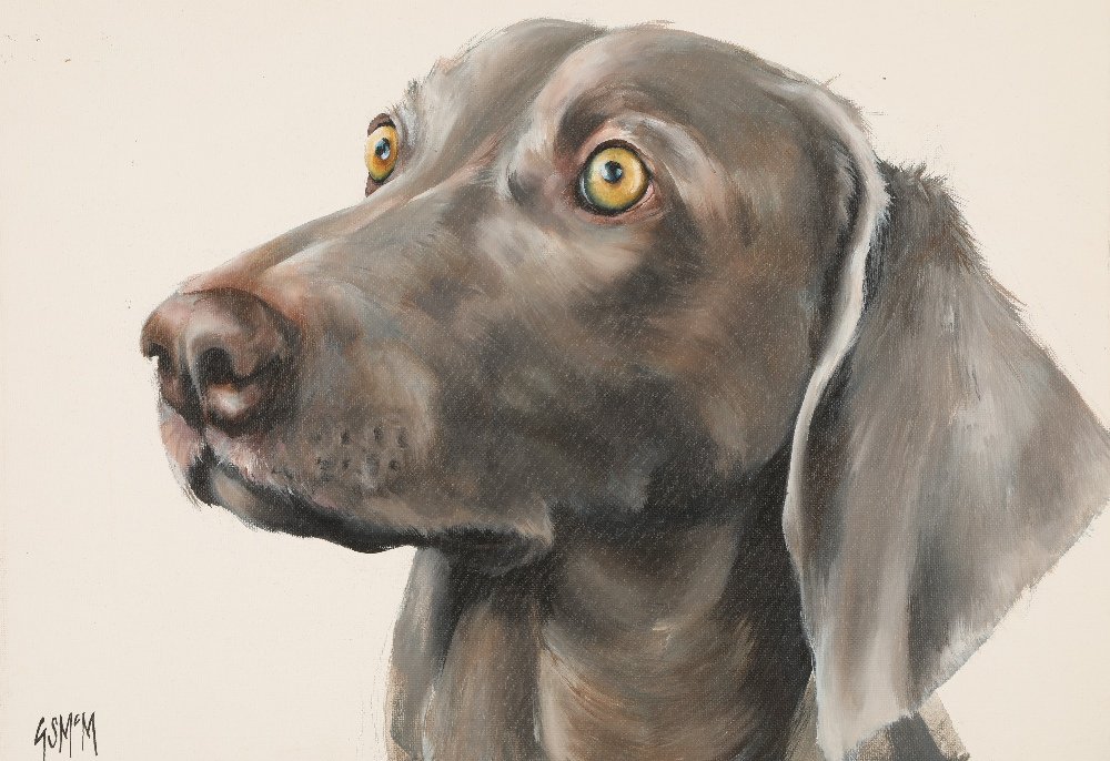 Georgina McMaster ARR Unframed oil on canvas, signed 'Portrait of a Dog' 30cm x 40cm