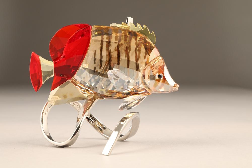 Swarovski crystal paradise butterfly fish, crystal body raised on a stylised chrome metal base,