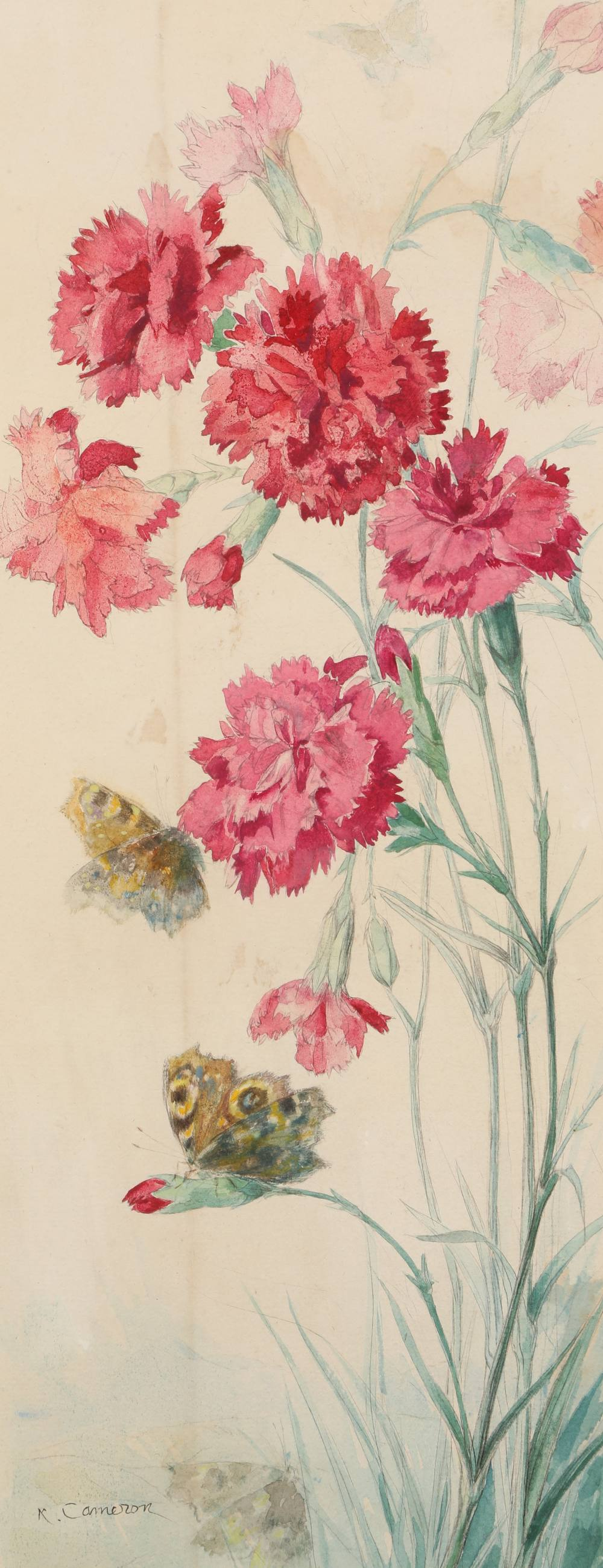 Katherine Cameron RE RSW (Scottish 1874 - 1965) ARR Framed watercolour, signed 'Wild Carnations with
