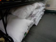 Twenty one pillows (un-used)