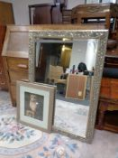 A decorative gilt framed bevel edged overmantel mirror together with a framed photograph of an owl.