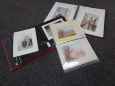 Three albums containing Pauline Cooney watercolours