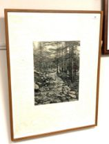 Paul Stangroom : Pathway, Dharakote, India, etching, an artist's proof, signed, dated '83,
