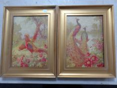A pair of antiquarian textured prints depicting peacocks and chickens in gilt frames