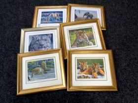 A group of six gilt framed Steven Gayford wildlife signed limited edition prints