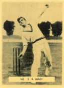 POTTER MOORE, Famous Cricketers (English), complete, medium, G to VG, 20