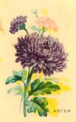 WEBER BAKING CO., How Many Flowers can you Name?, medium, US trade issue, small nick to one edge, FR