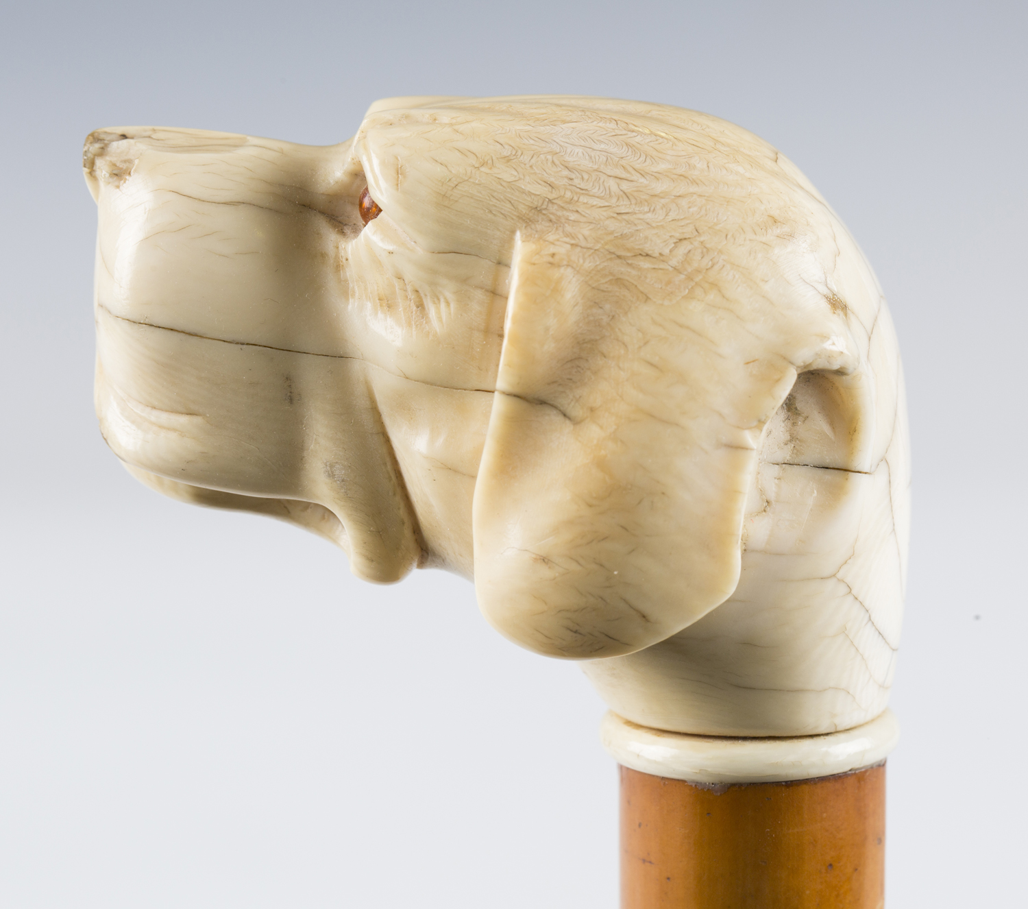 A 19th century Malacca walking cane, the substantial ivory handle finely carved as a dog's head with - Image 8 of 10