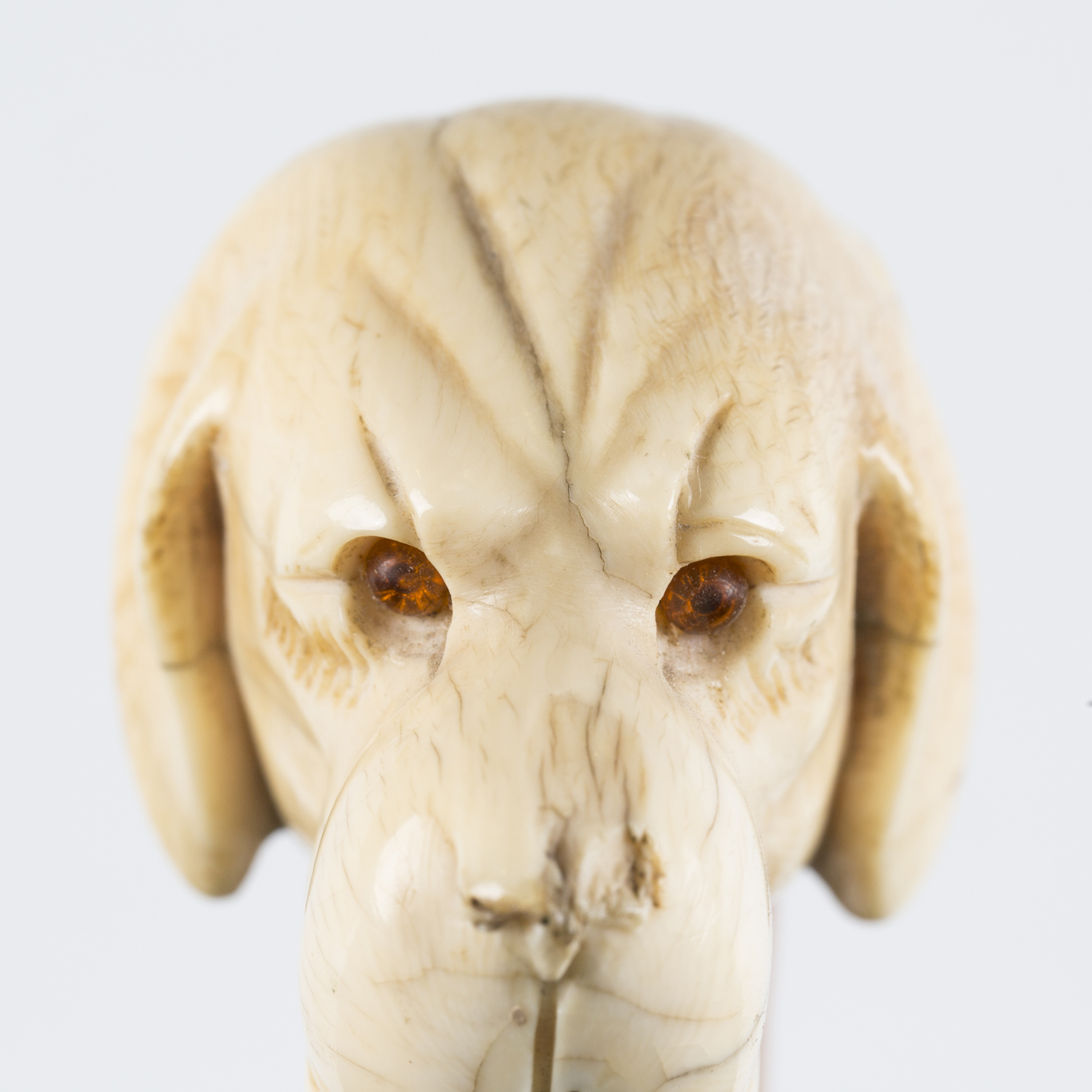 A 19th century Malacca walking cane, the substantial ivory handle finely carved as a dog's head with - Image 6 of 10