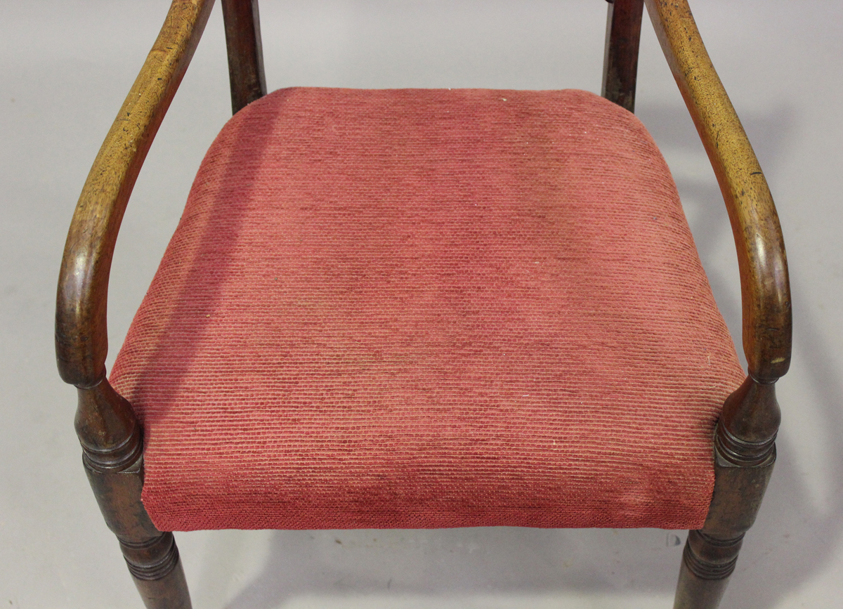 A Regency mahogany bar back elbow chair with carved back and red velour padded seat, height 82cm, - Image 3 of 4