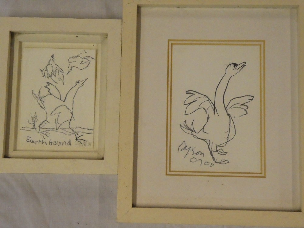 Julian Dyson - pencil Study of a goose, signed and dated '00,