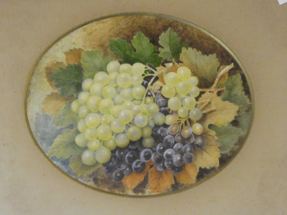 Artist unknown - watercolour A study of grapes,