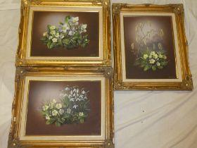 Shergold - oils on panels Three studies of flowers, signed,