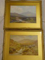 """F** Widgery - watercolours Dartmoor scenes including """"Belstone Tor from the Tan/Yes Tor Dartmoor"""","""
