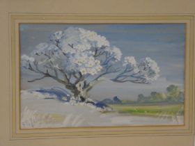 F**B**Yalavatti - watercolour Blossoming tree in a landscape, signed,