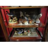 A collection of porcelain bird figurines including Goebel and Leonardo Collection