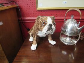 A Winstanley Bulldog